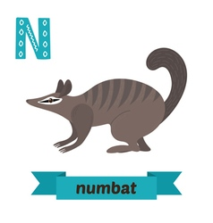 Numbat n letter cute children animal alphabet in vector