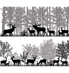 Herd of deer vector image vector image