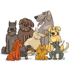purebred dog characters group vector image