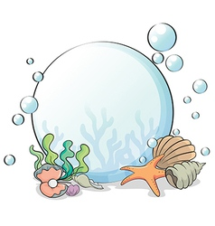A crystal ball with seashells vector