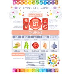 thiamine vitamin b1 food icons healthy eating vector image