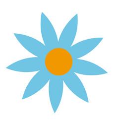 blue flower natural decoration delicate vector image