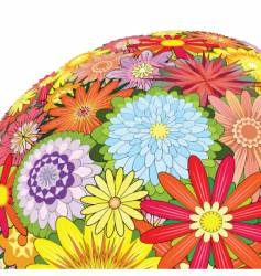 mixed flowers vector image vector image