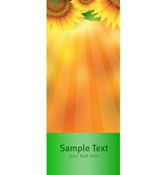 The label on the bottle vector image
