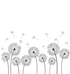 Dandelions plant vector image