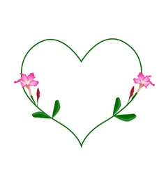 Pink desert rose flowers in a heart shape vector