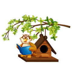 Owl reading book by the birdhouse vector