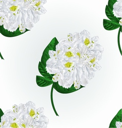 Seamless texture white rhododendron twig vector