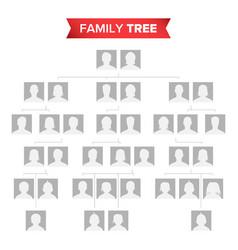 genealogical tree blank family history vector image