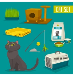 Cat object set items and stuff cartoon  food stuff vector