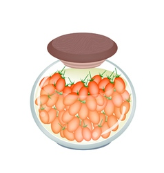 A jar of delicious pickled roma tomatoes vector
