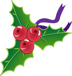 Xmas holly vector