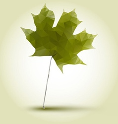 polygonal green maple leaf vector image