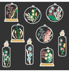 Set of hand drawn floral terrariums clip vector image