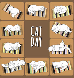 Cat day card cat on a striped mat vector