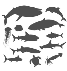 Marine fauna set of aquatic animals vector