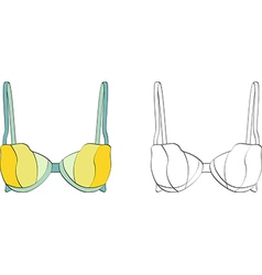 Brassieres vector image vector image