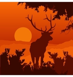 monotonic of an elk vector image vector image