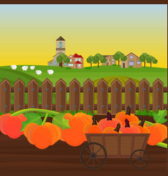 pumpkin harvest in a cart garden vector image