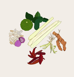 Thai herb ingredient spicy thai food collection vector