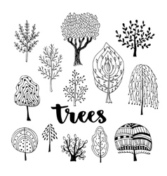 Trees set hand drawn collection of vector