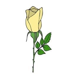 Bright yellow rose vector