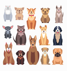 Different kinds of dog breeds on white background vector