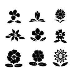 Flower back and white vector image vector image