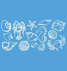 Sea animals shine vector