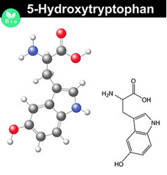 Hydroxytryptophan chemical structure vector image vector image