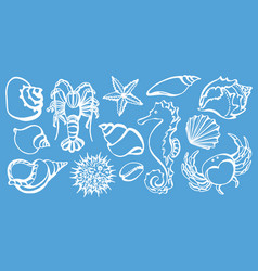 Sea animals shine vector