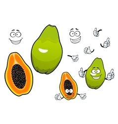 Mexican tropical papaya fruit cartoon characters vector