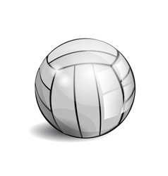 shiny volleyball vector image vector image