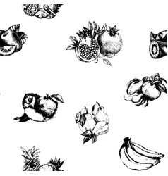Hand drawn vintage set of berries and fruits vector