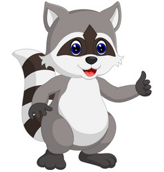 Raccoon cartoon waving vector