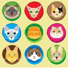 Set of 9 cats faces icons vector