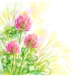 Background with flowers of clover vector