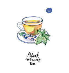 watercolor glass cup of black currant tea vector image vector image