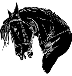 black horse silhouette vector image vector image
