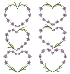 Set of heart of flowers of lavender vector