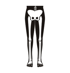 Half body silhouette system bone with leg bones vector