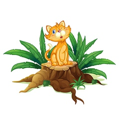 A cat sitting on a stump with leaves vector