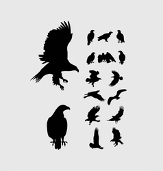 Eagle set silhouettes vector
