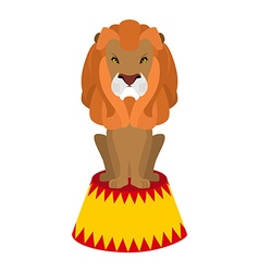 Circus lion Wild cruel animal sitting on pedestal vector image
