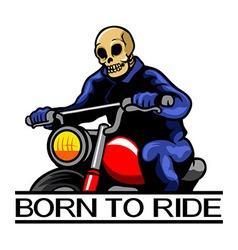 Skull Motoride vector image