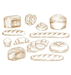Bread and bakery sketch icons vector