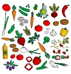 Healthy vegetables with condiments sketch icon vector image