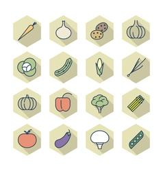 Thin line icons for vegetables vector