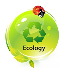 Ecology with ladybug vector