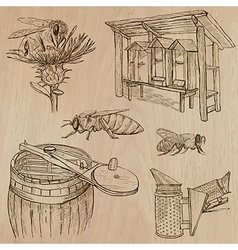 Bees beekeeping and honey - hand drawn pack 7 vector